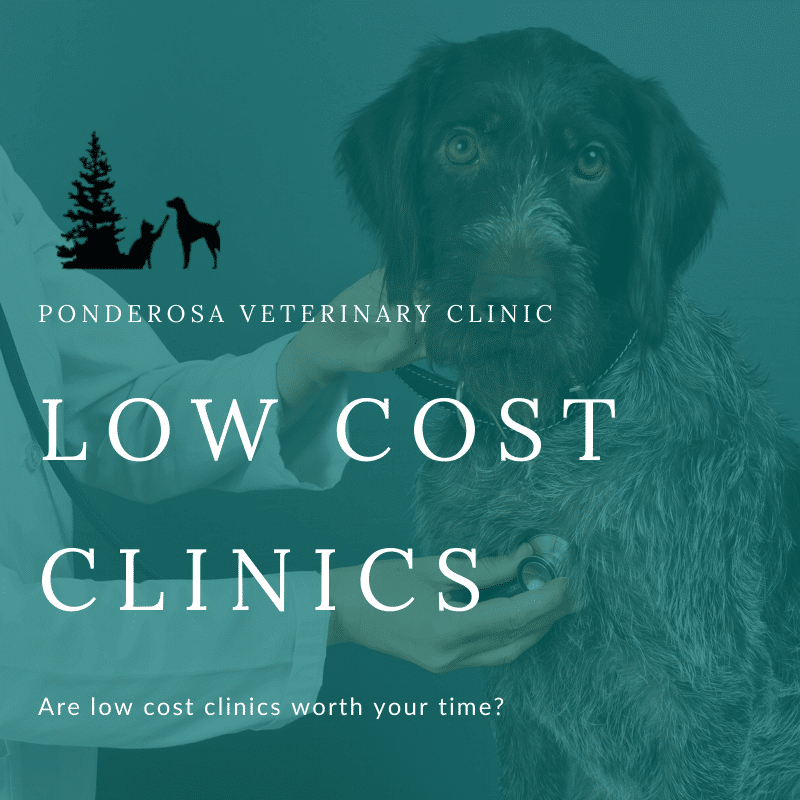 graphic showing low cost clinics