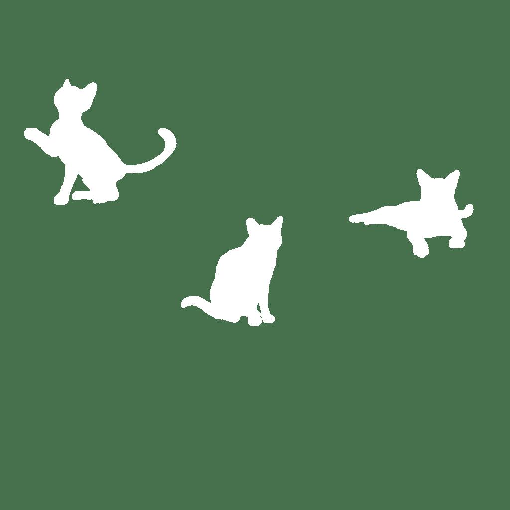 white cat shapes