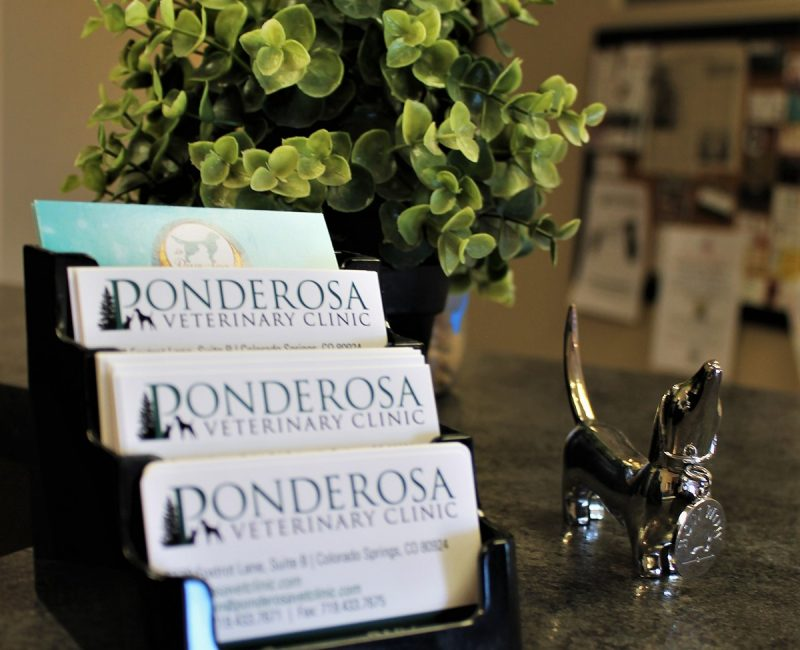 Ponderosa_Interior_Cards_Web