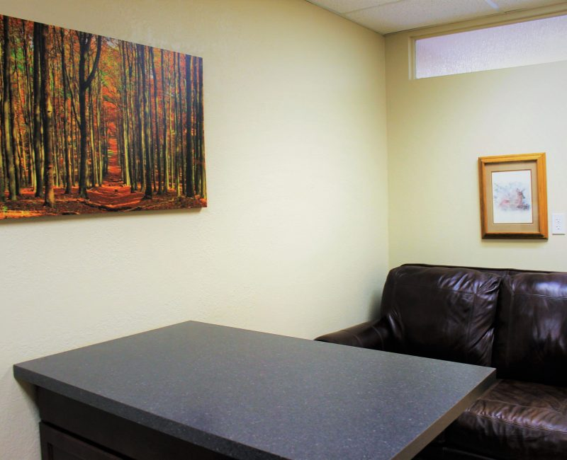 Ponderosa_Interior_Patient Room_Couch_Table_Web