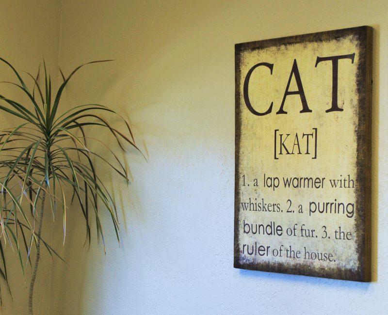 Ponderosa_Interior_Sign_Cat_Web