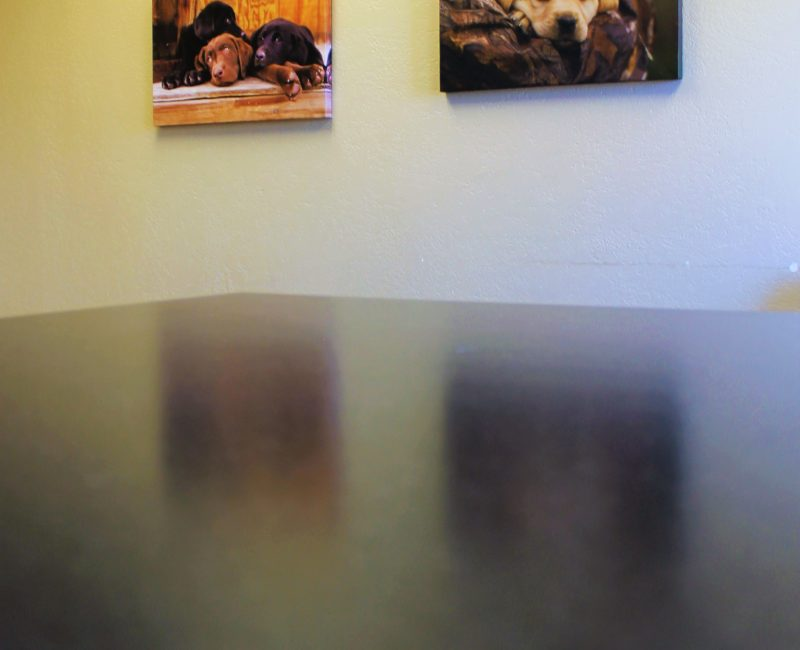 Ponderosa_Interior_Table View_Web