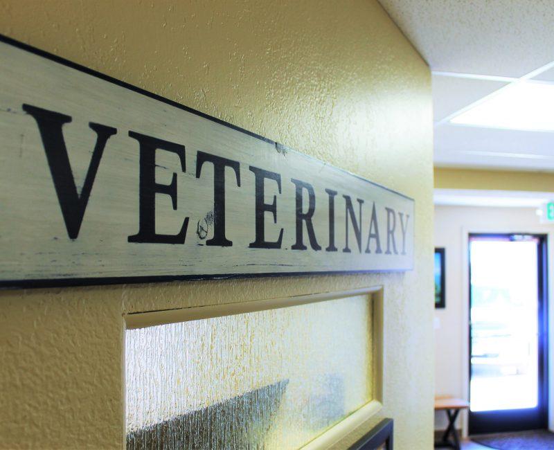 Ponderosa_Interior_Veterinary Sign_Web